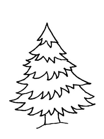 Natale, generatore di ricordi. Per questo è importante cucinare